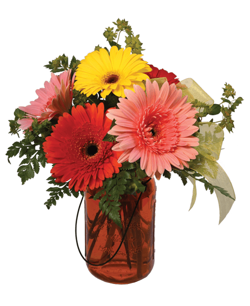 Mason jar flowers png. Gerbera royer s and