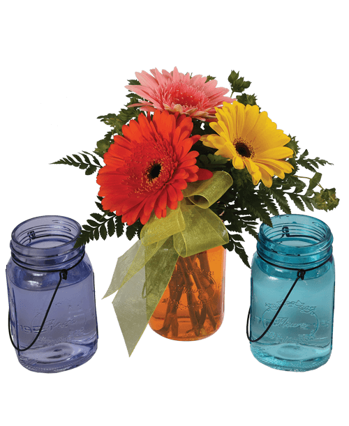 Gerbera royer s and. Mason jar with flowers png clip art black and white stock