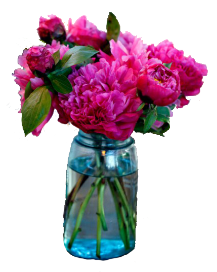 Mason jar with flowers png. Products accessories all things