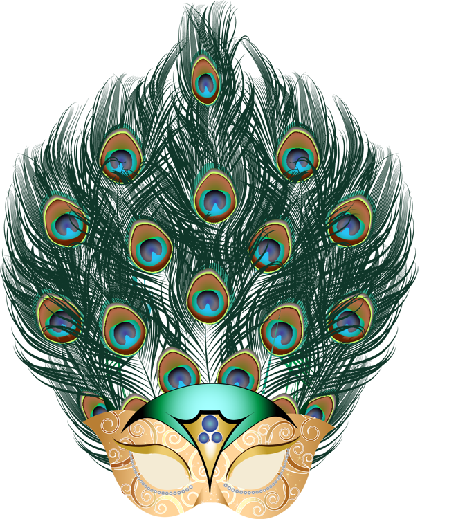 Mardi gras feathers png. What do you really