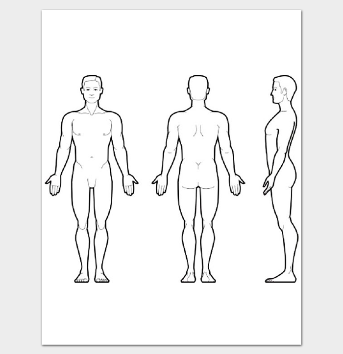 Massage clipart body outline. Human front and back