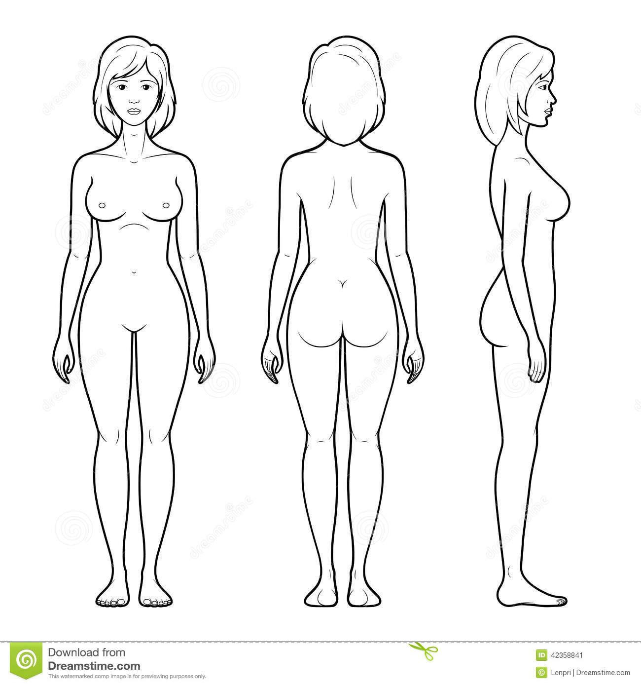 Massage clipart body outline. Images for female human