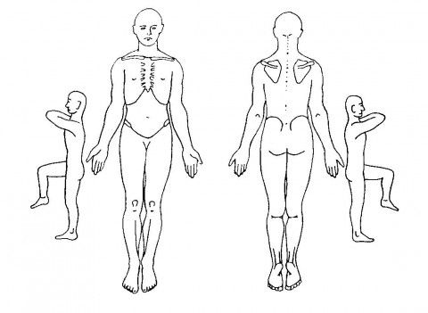 Massage clipart body outline. Female physical examination pinterest