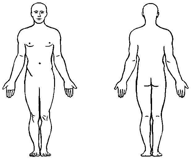 Massage clipart body outline. Human anatomy printable for