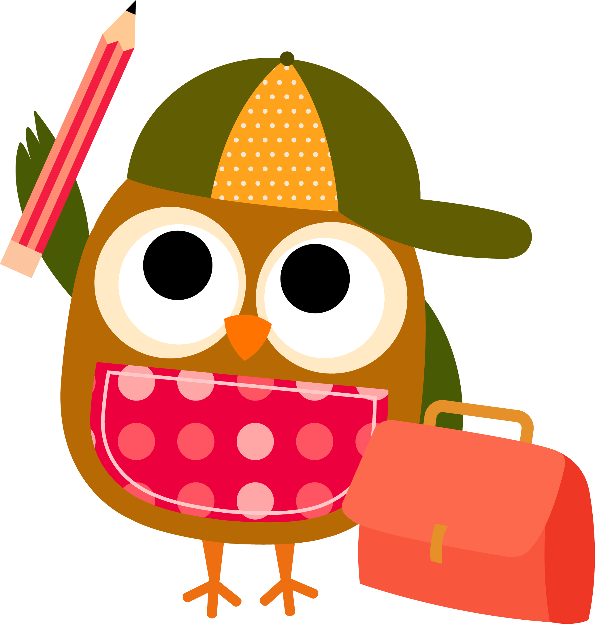 smart clipart smart owl