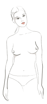 Matisse drawing shape. Breast dictionary shopping