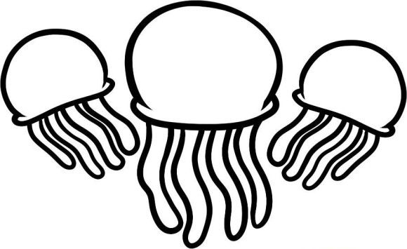 Mattejelly. Three jellyfish coloring pages