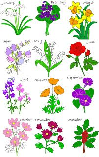 May clipart june flower. Birthday flowers by month