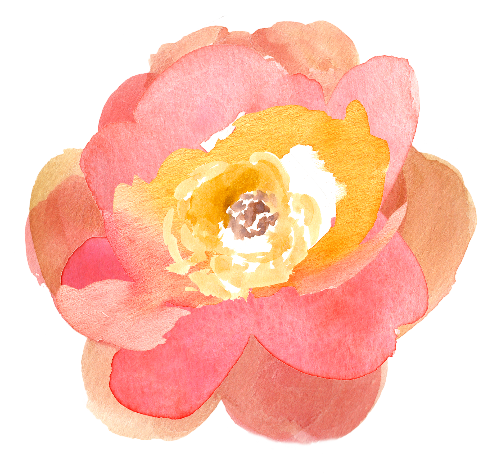 October clipart watercolor. Free fall floral clip