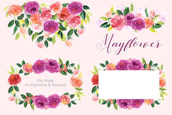 Mayflower clipart flower blossom. Floral watercolor illustrations creative