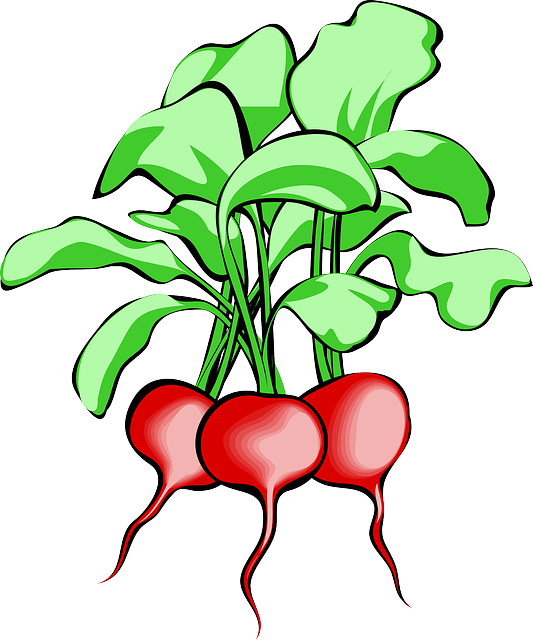 Soup clipart starter. Free photo raw beef