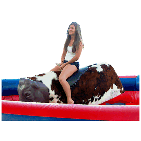 Transparent bull mechanical. Inflatable rides an introduction