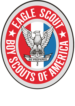 Medal drawing eagle scout. Court of honor tools