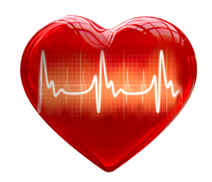 3d heart png. D for medical use