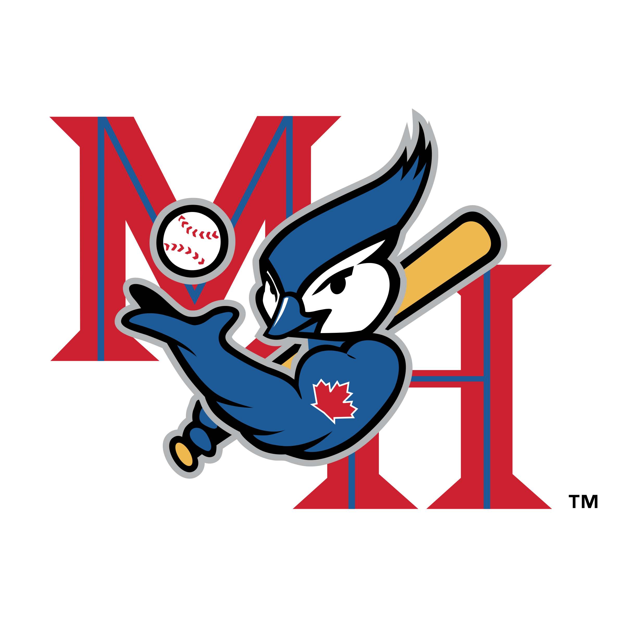 Medicine vector cartoon. Hat blue jays logo