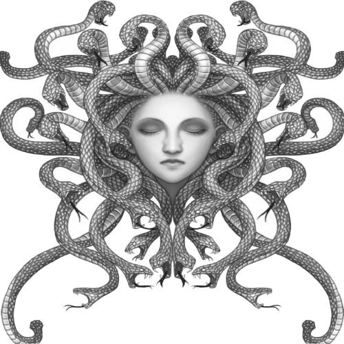 Medusa head png. Google search pinterest