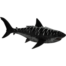 Megalodon ark png. Theridk zt download library