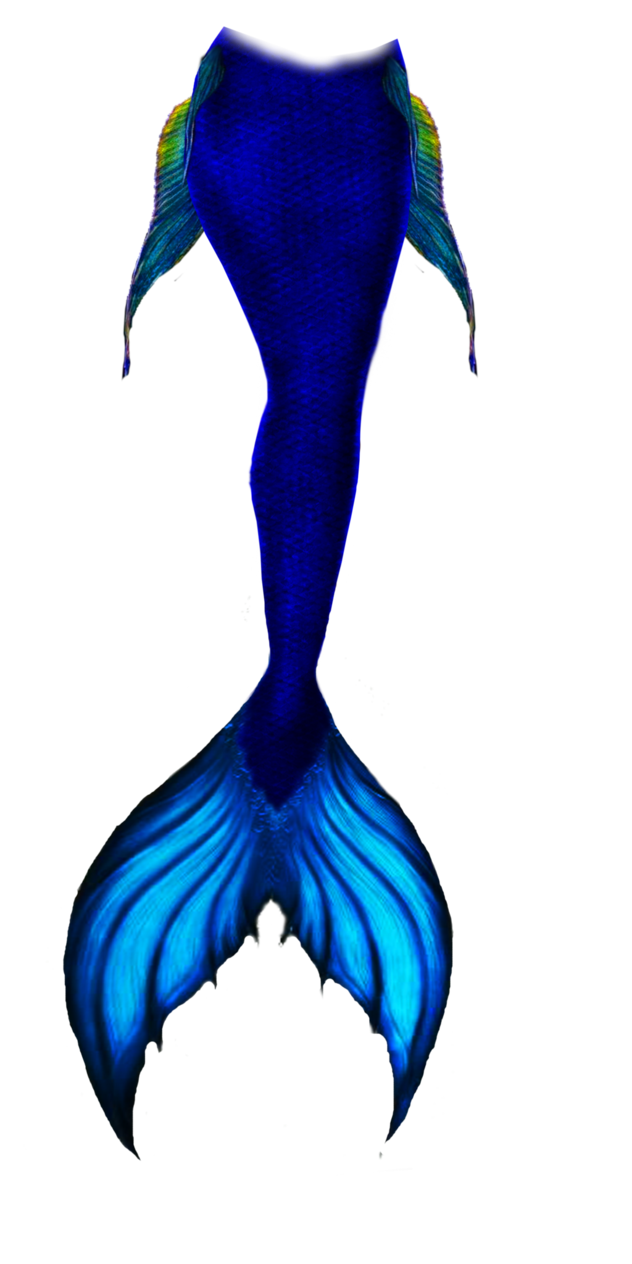Mermaid tails png. Blue tail by goth