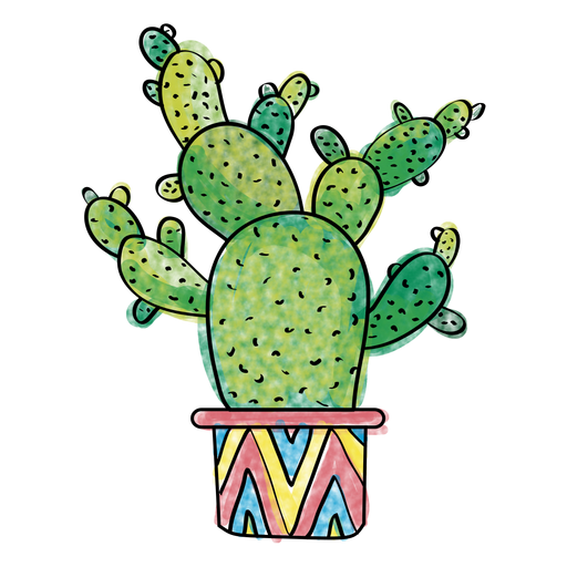 Mexican cactus png. Hand drawn watercolor multiple