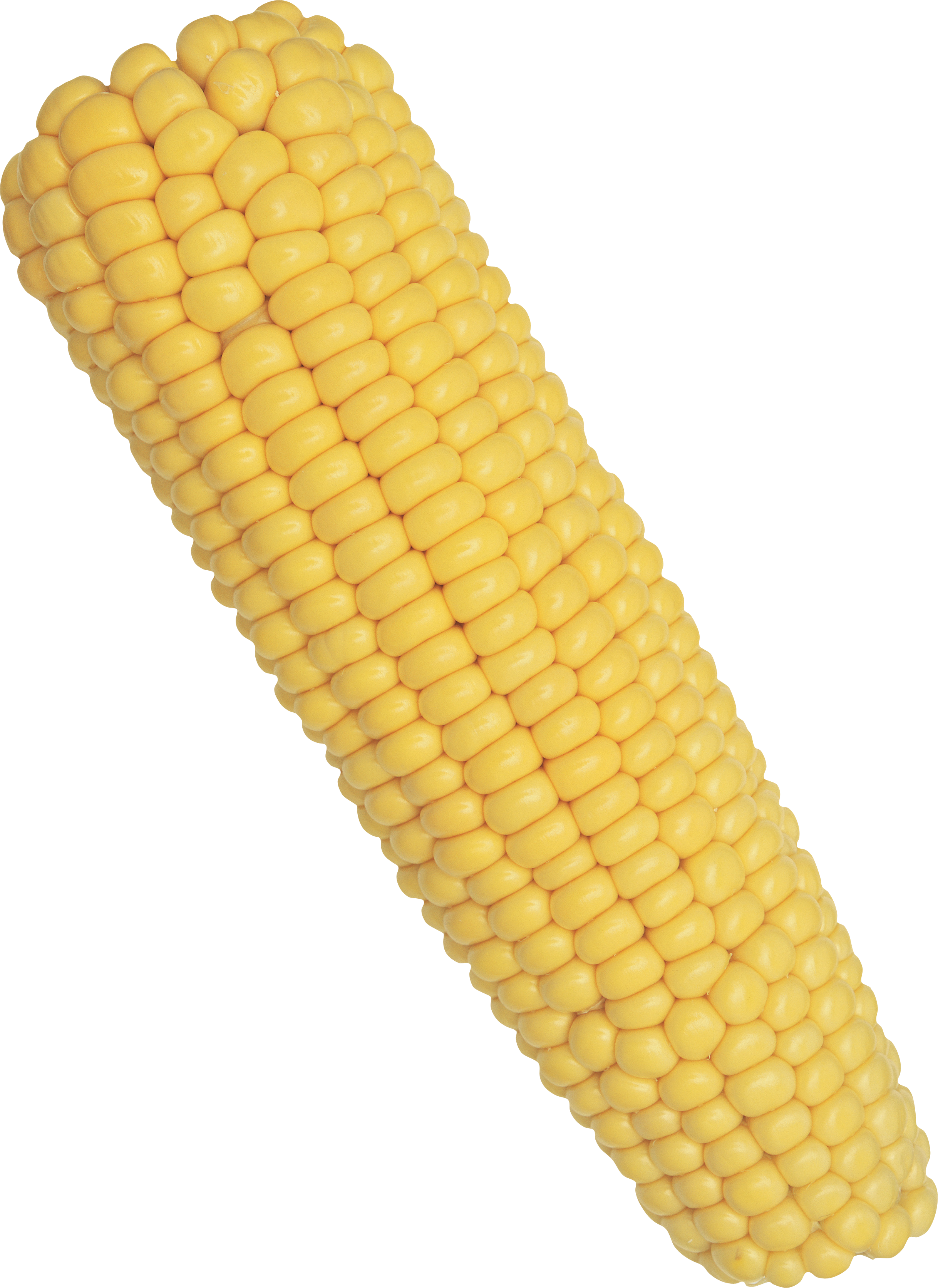 corn on the cob png