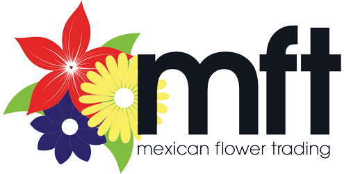 Mexican floral png. Flower trading inc