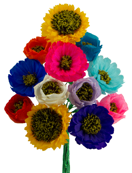 Mexican flowers png. Assorted paper dozen