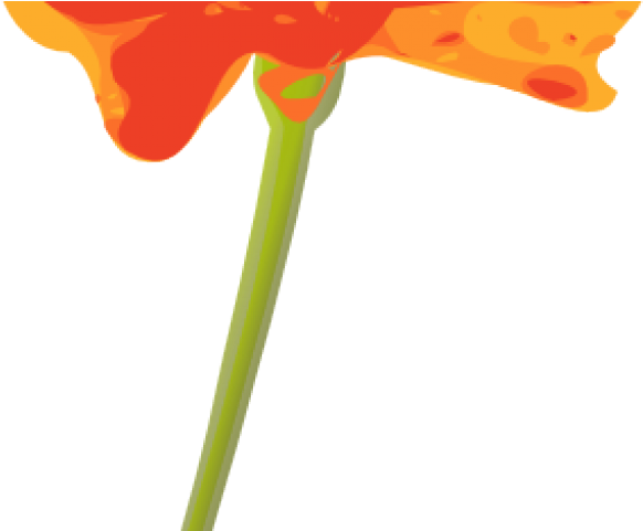 Mexican flower png. Download orange clipart x