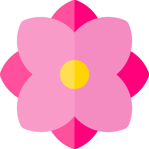 Mexican flowers png. Flower flat hotpink icon