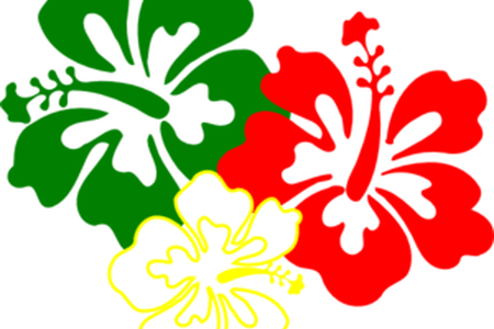 Mexican flowers vector png. Online free these are