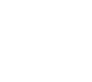 Mexico clipart drawing. Bird flag outline png