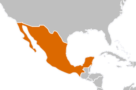 Mexico map png. Vector huge freebie