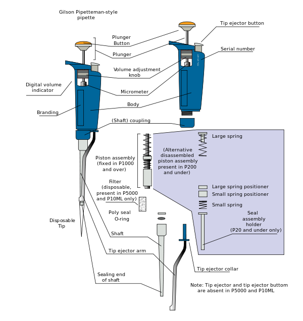 Micropipette drawing. Air displacement pipette revolvy
