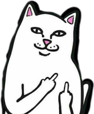 Middle finger meme png. Cat sticker by miss