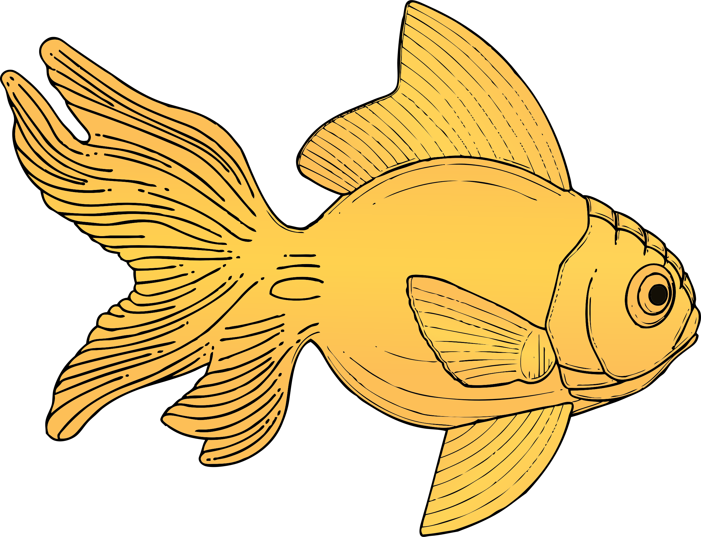 Mindful drawing decorative fish. Image result for fanciful