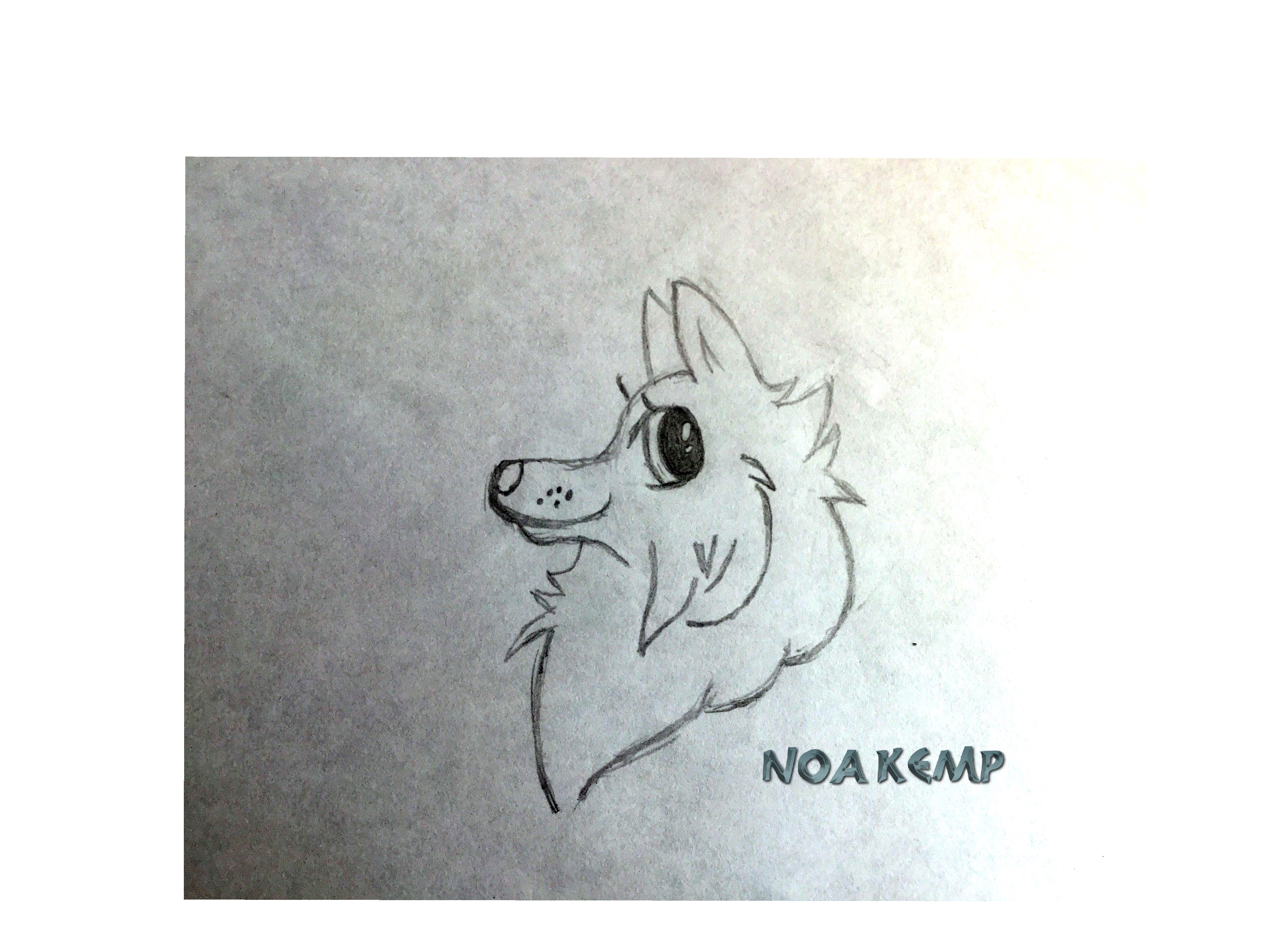 Mindful drawing wolf. Fox chihuahua cartoon in