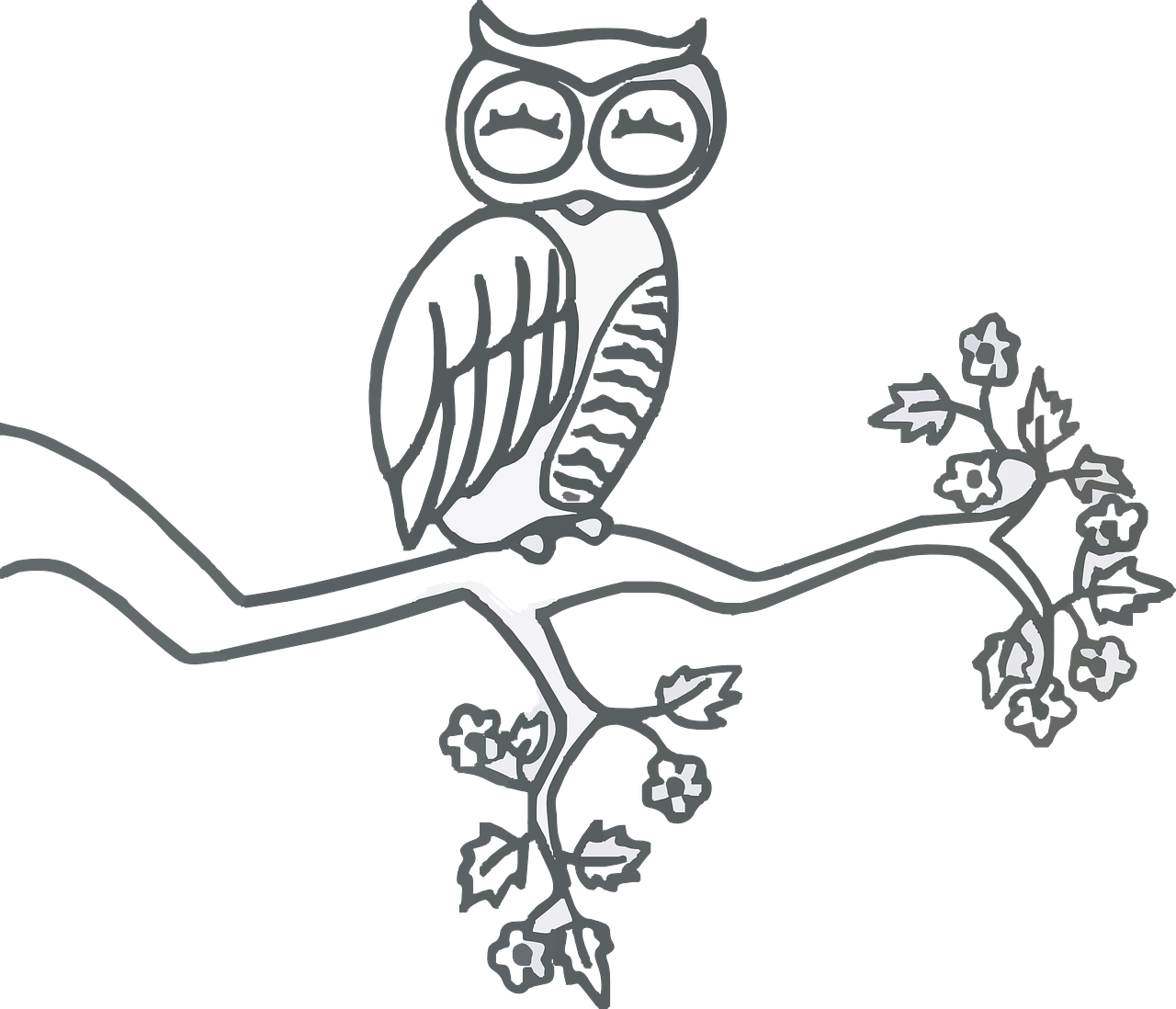 Mindfulness drawing owl. Perched sleep spring transparent