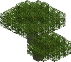 Birch trees png. Tree official minecraft wiki