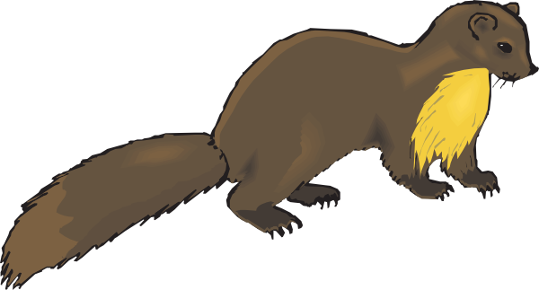 Mink drawing muskrats. Muskrat clipart at getdrawings