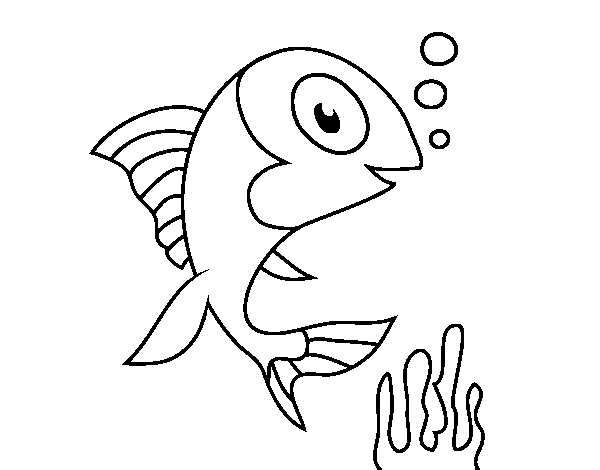 Mink drawing sea. Fish coloring page coloringcrew