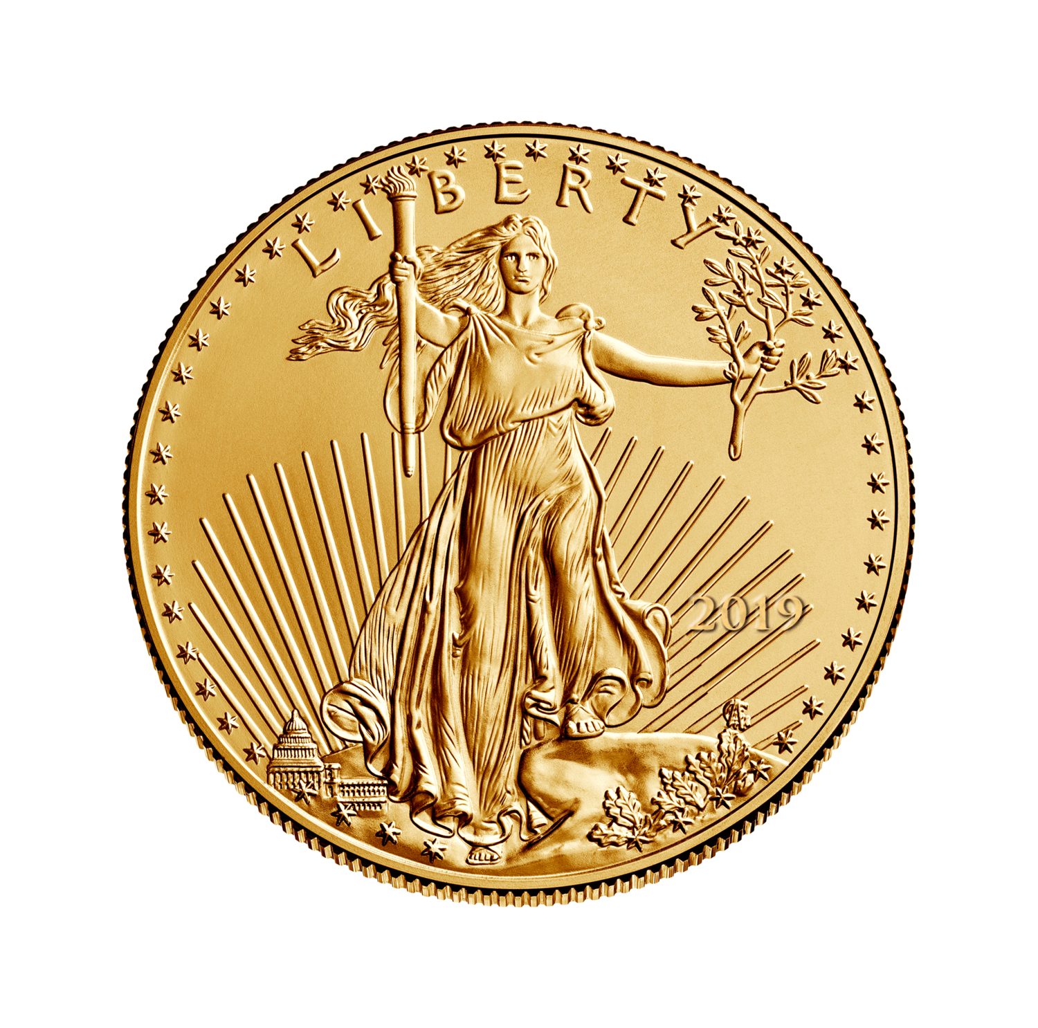 Mint condition png. American eagle gold