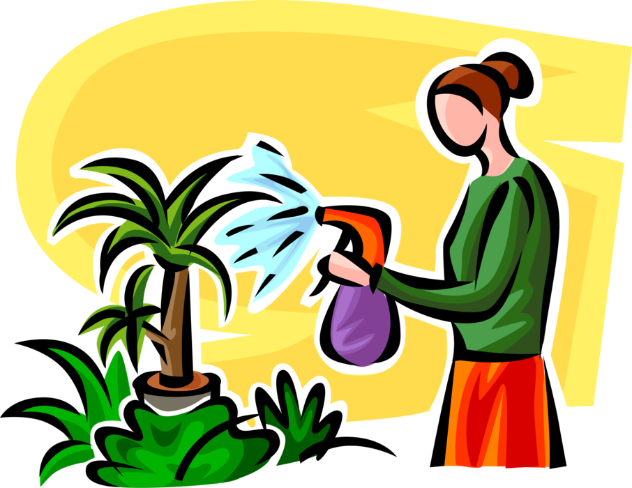 Mist vector illustration. Watering houseplants with spray