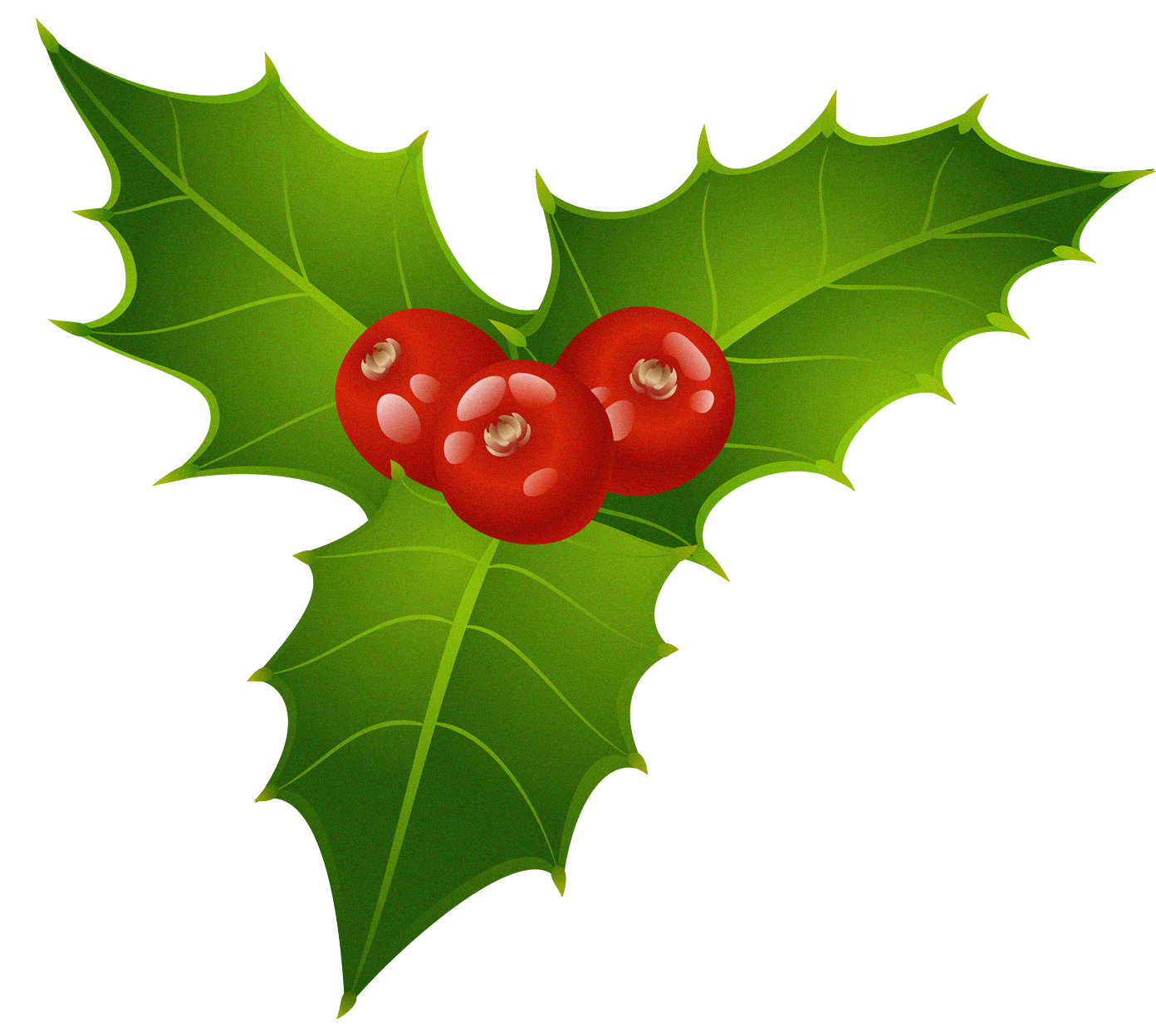 Christmas Clipart Png.Christmas Mistletoe Transparent Png Clipart Free Download