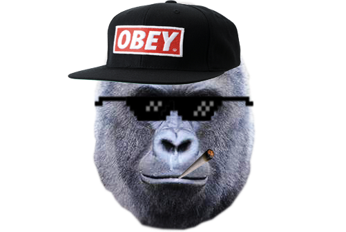 Harambe by scorpopro on. Mlg png clipart transparent