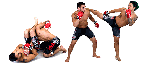 Mma vector muaythai. Free png download clipart