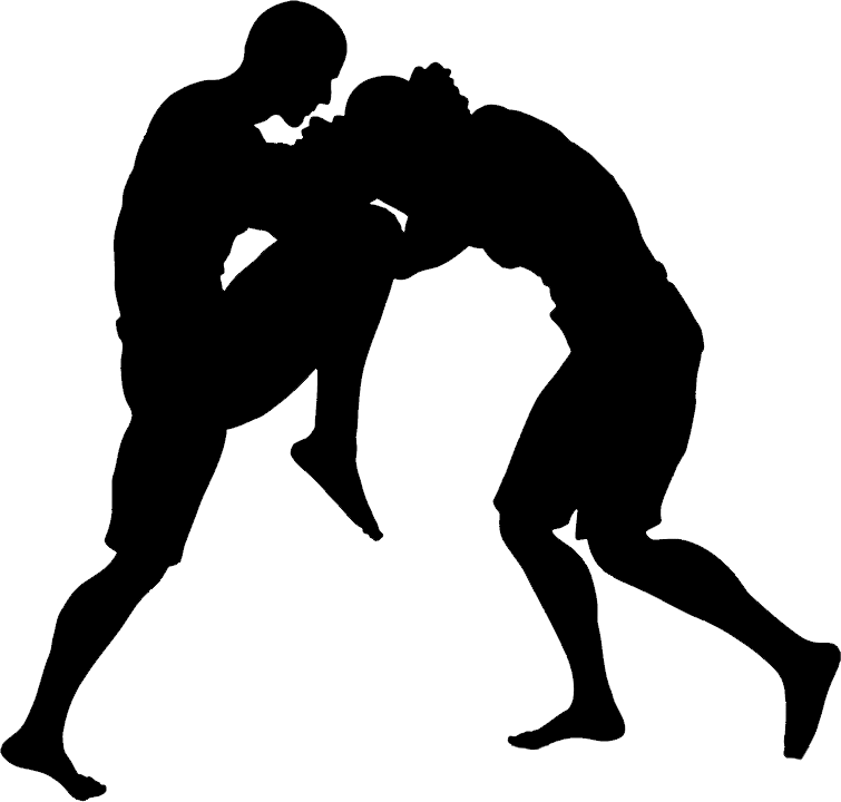 Mma vector silhouette. Free transparent png clipart