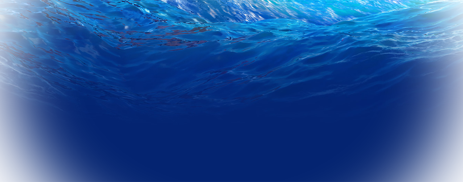 Moana background png. Check all