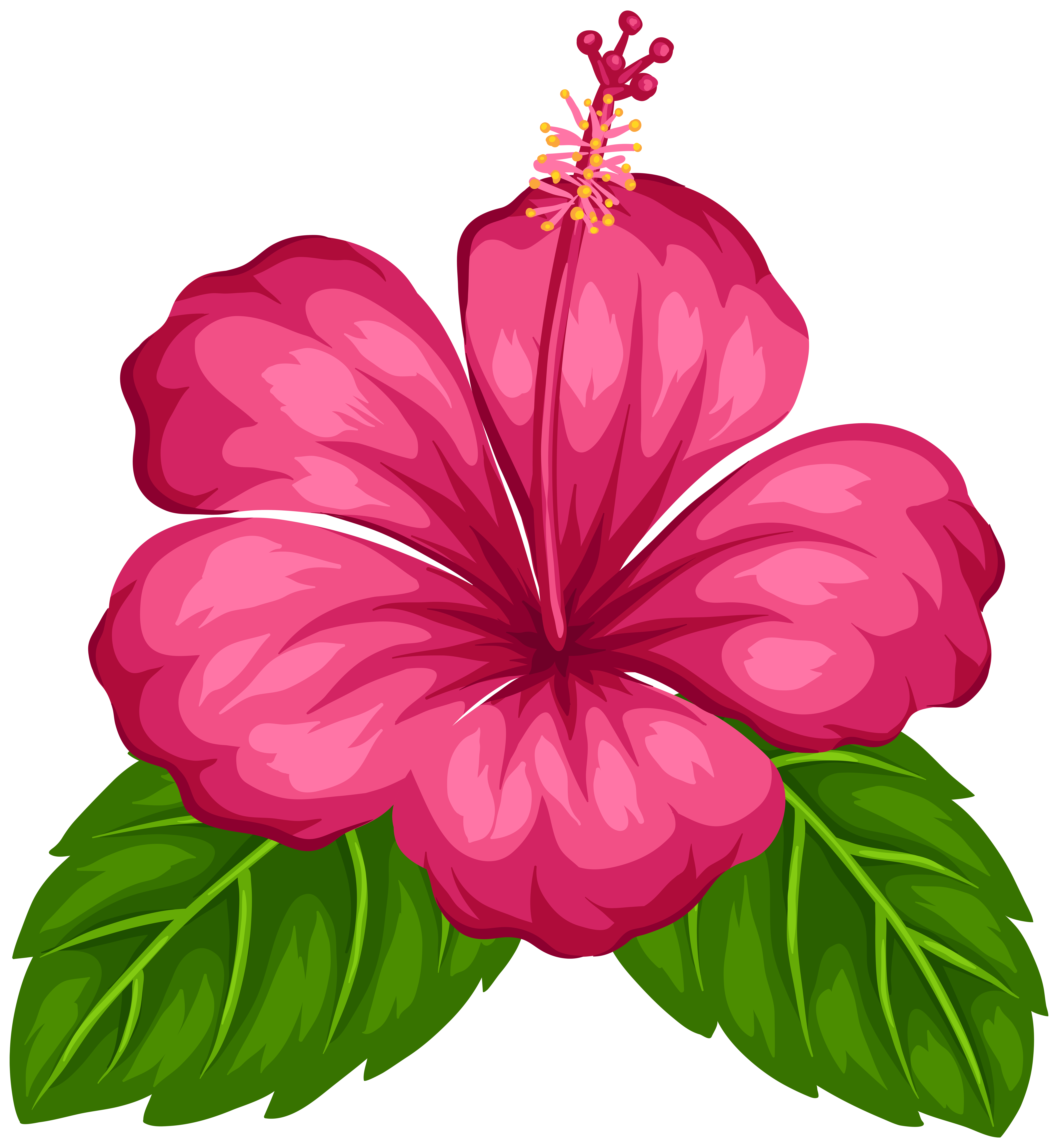 Exotic flower clip art. Chinese flowers png banner transparent stock