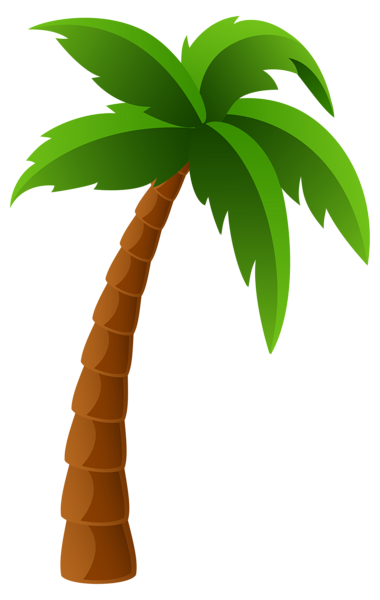 Palm leaf clipart png. Tree image graphics pinterest