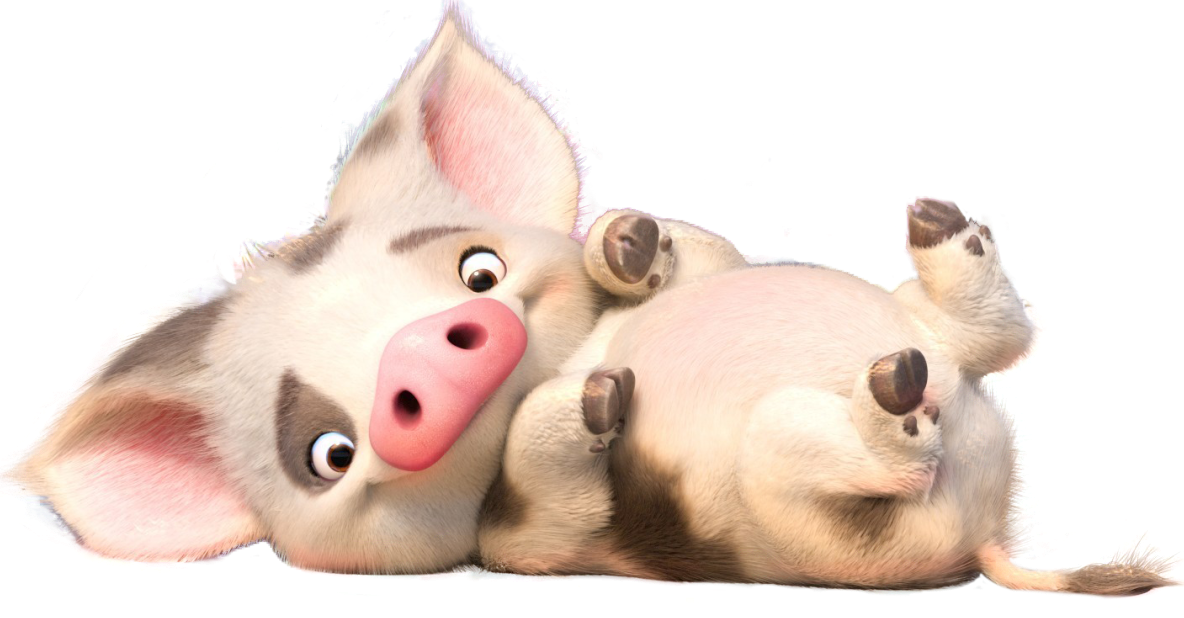 Pua drawing concept art. Image the pig png