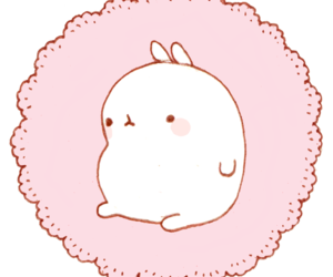Molang transparent cute. Images about on